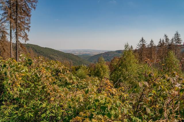 Rundwanderung zum Kreuz des deutschen Ostens | Wandern im Harz | Luchsgehege Bad Harzburg 10