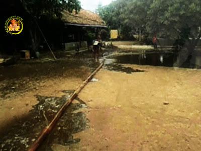 FOTO 5 :   Penyiraman Tanaman Rambutan di pekarangan rumah