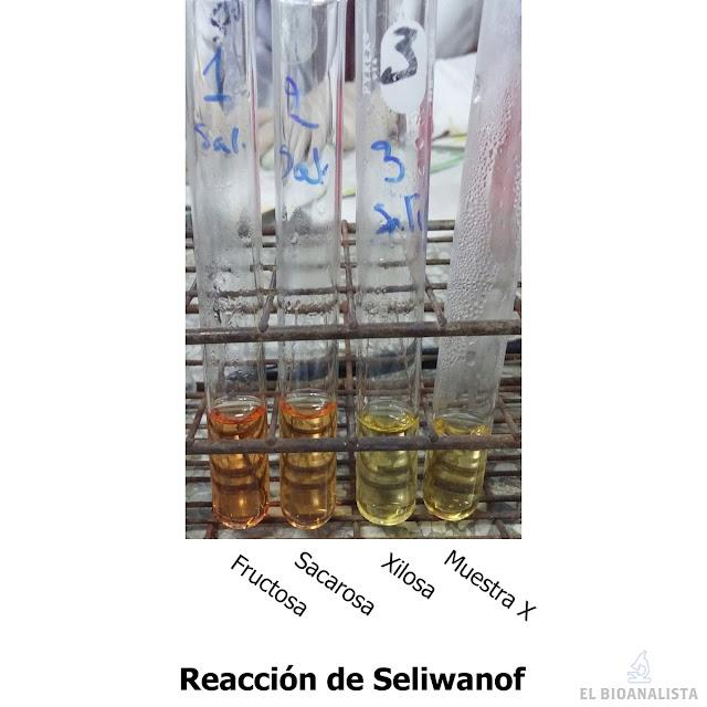 prueba de seliwanoff bioquímica identificación de carbohidratos