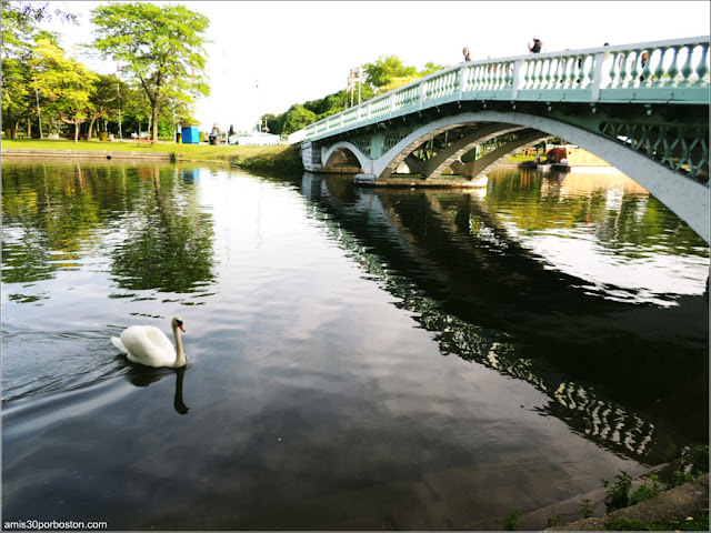 Puente en el Toronto Island Park