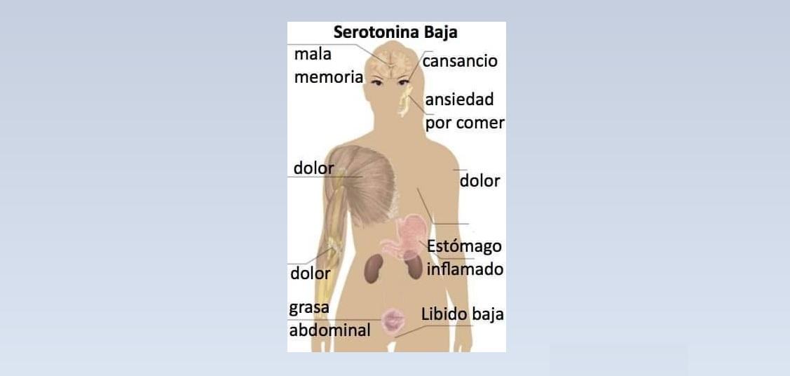 Señales que te indican que hay niveles bajos de serotonina