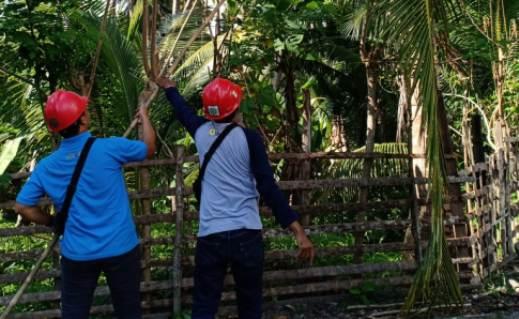 90% Pemadaman Listrik Terjadi Akibat, Gangguan Jaringan, Ini Himbauan PLN selayar