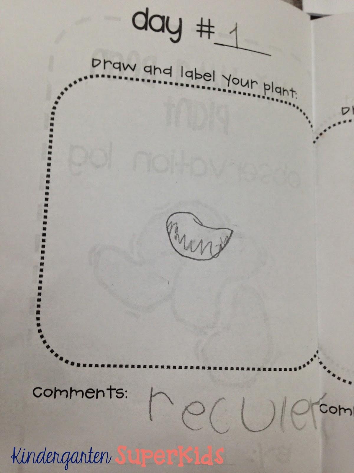 Kindergarten Superkids Lima Bean Love