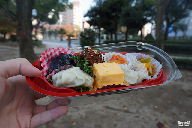 Bento at the park, Fukuoka