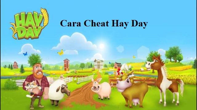 cara cheat hay day