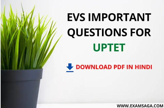 EVS-Important-Questions-UPTET