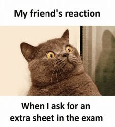 Exam Quotes Funny