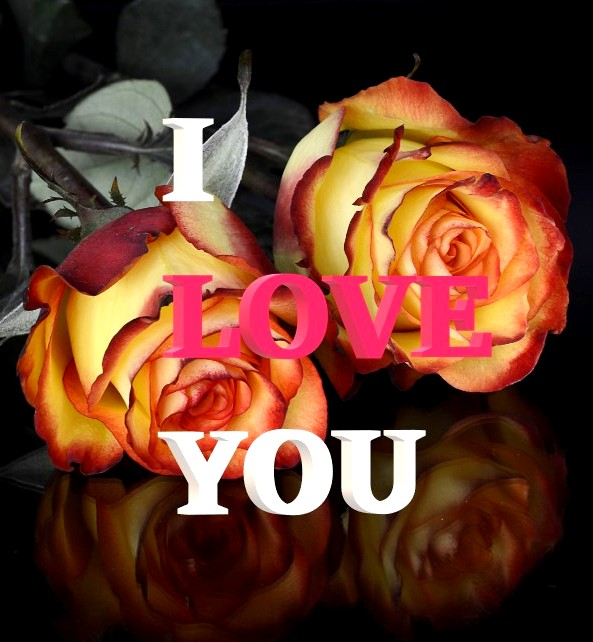 I Love You 3D images with Rose