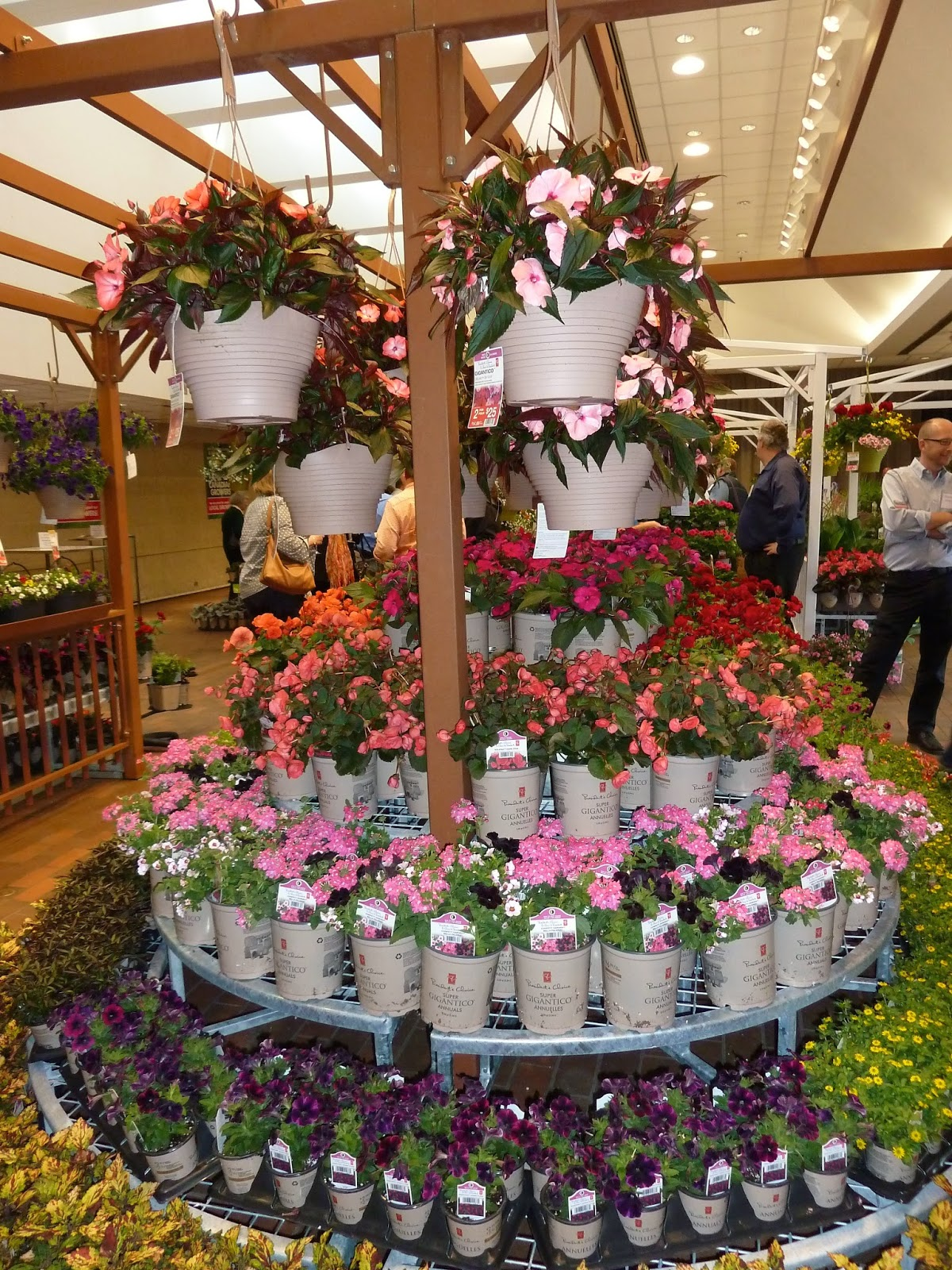 Barbara's Garden Chronicles: What's New At Loblaw Lawn And