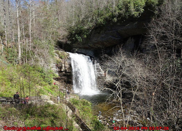 Looking Glass Falls - Asheville  North Carolina