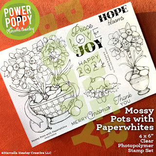 Power Poppy, Marcella Hawley, Mossy Pots with Paperwhites