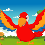 Games4King Macaw Bird Escape From Cage