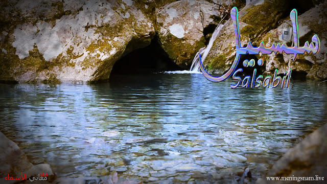 معنى اسم سلسبيل وصفات حاملة هذا الاسم Salsabil