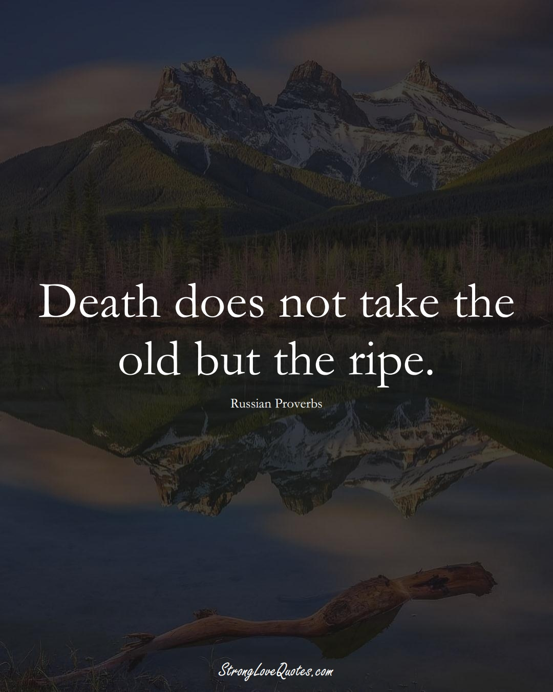 Death does not take the old but the ripe. (Russian Sayings);  #AsianSayings