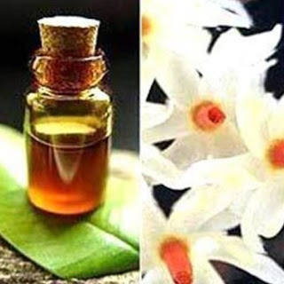 Aromatic Jatamansi