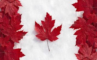 The Canadian Flag made out of maple leaves