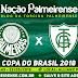 Jogo Palmeiras x América-MG Ao Vivo 23/05/2018 [Narração]