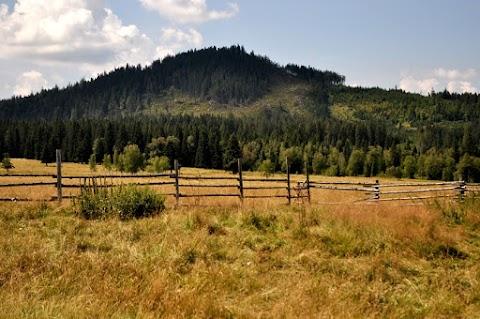Údolí Horské Kvildy