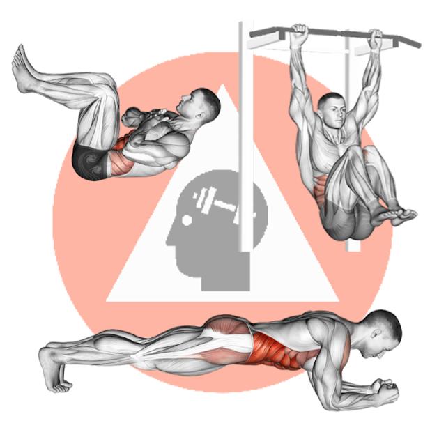 top exercices de musculation fitness pour abdos lombaires transverse sans matériel à domicile