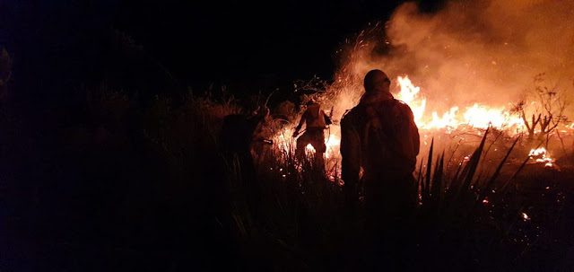 Brigadista combatendo incendio em Mucugê e Andaraí (Foto: Sematur/Divulgação)
