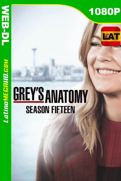 Anatomía según Grey (2013) Temporada 15 Latino HD WEB-DL 1080P ()