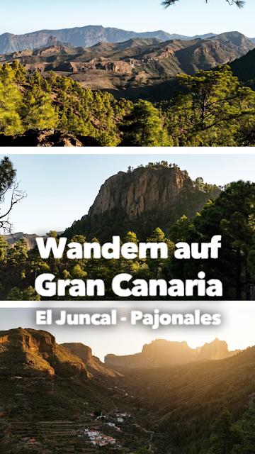 Wandern auf Gran Canaria – Von El Juncal ins Naturschutzgebiet Pajonales 20