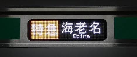 【ダイヤ乱れで初見!】E233系の特急 海老名行き