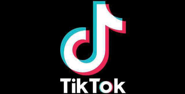 Google play store Tik Tok info Hindi,