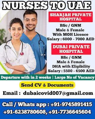 Large Number of Male & Female Nurse Vacancy in UAE