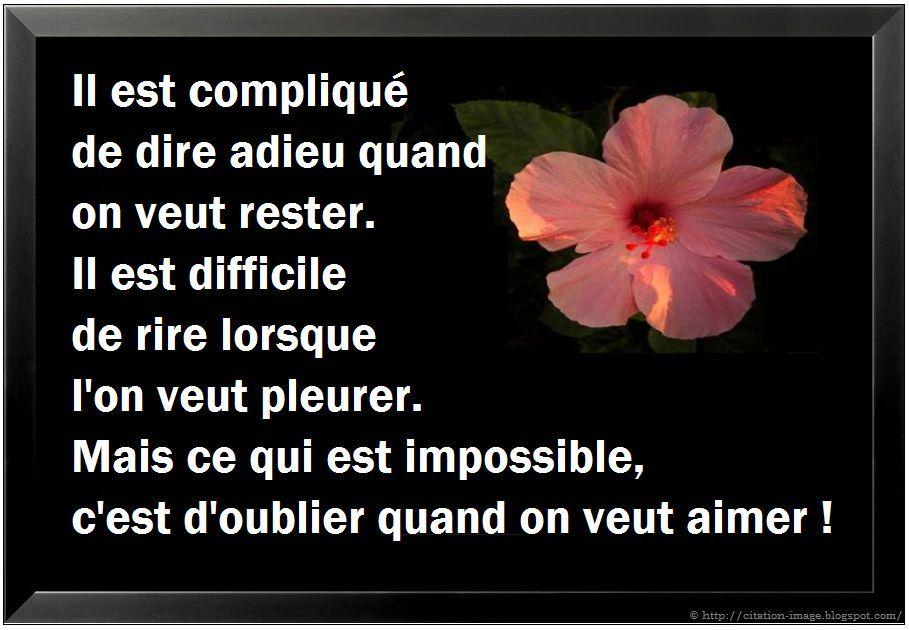 Citation Damour Impossible Triste