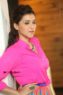 Actress Mannar Chopra in Pink Top and Blue Skirt at Rogue movie Interview  0148.JPG