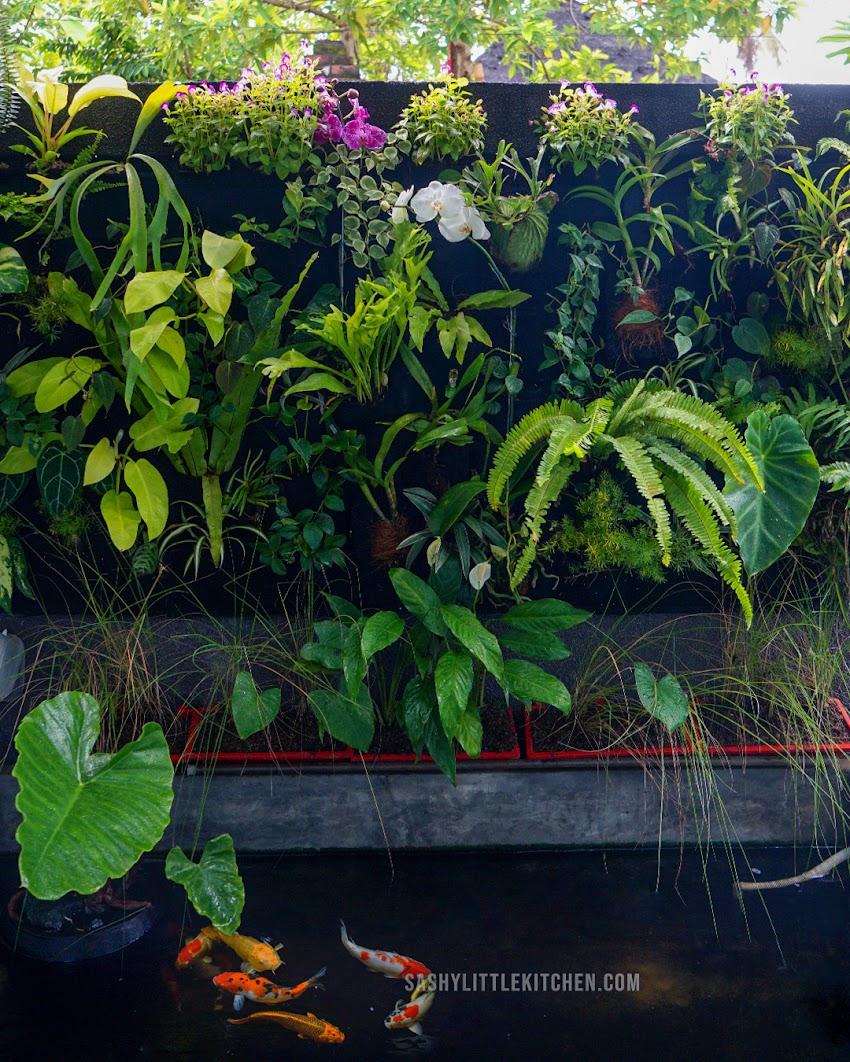 Membuat Vertical Garden Sendiri ? ini hal-hal yang wajib kamu perhatikan.