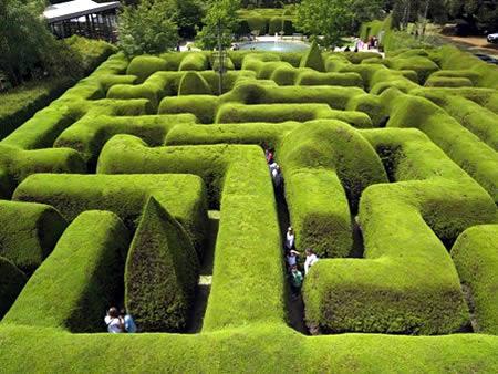 Labirin di Australia paling indah; http://id.faktaunik.dorar.info/