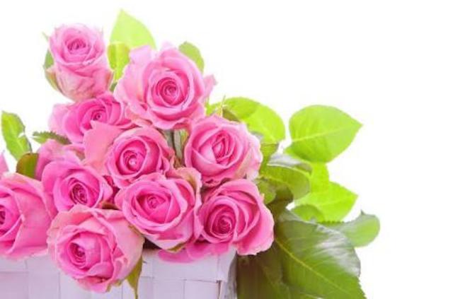 Rashi Khanna Beautiful Hair Style In Pink Dress