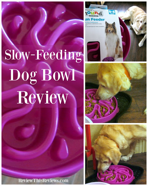 Is your dog determined to set speed records at dinnertime? Does he have problems with bloat or regurgitation? Then try a slow-feeding dog bowl. Here's my review of the Outward Hound Fun Feeder.