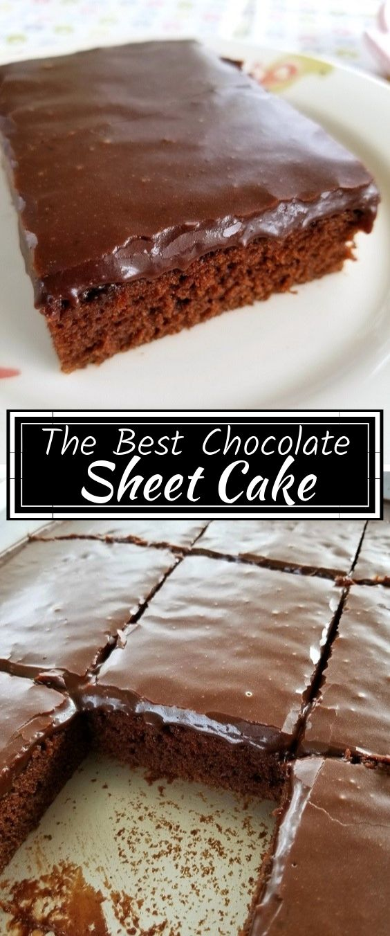 The Best Chocolate Sheet Cake | Dessert Recipes Easy, Dessert Recipes Healthy, Dessert Recipes Peach, Dessert Recipes Simple, Dessert Recipes Best, Dessert Recipes Fall, Dessert Recipes Chocolate, Dessert Recipes No Bake, Dessert Recipes Cake, Dessert Recipes Christmas, Dessert Recipes Mexican, Dessert Recipes Strawberry, Dessert Recipes For Two, Dessert Recipes Quick, Dessert Recipes Cheesecake, Dessert Recipes Cookies, Dessert Recipes For Parties. #Chocolate #Sheetcake #Dessert #Easyrecipes