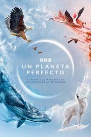 Ya Disponible Un planeta perfecto (2021) Temporada 1 Audio Español / Subtitulado【Mundoseries】
