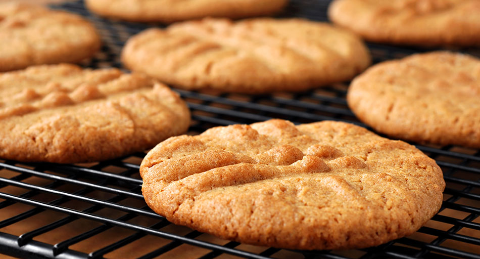 Manufacturing of protein biscuits