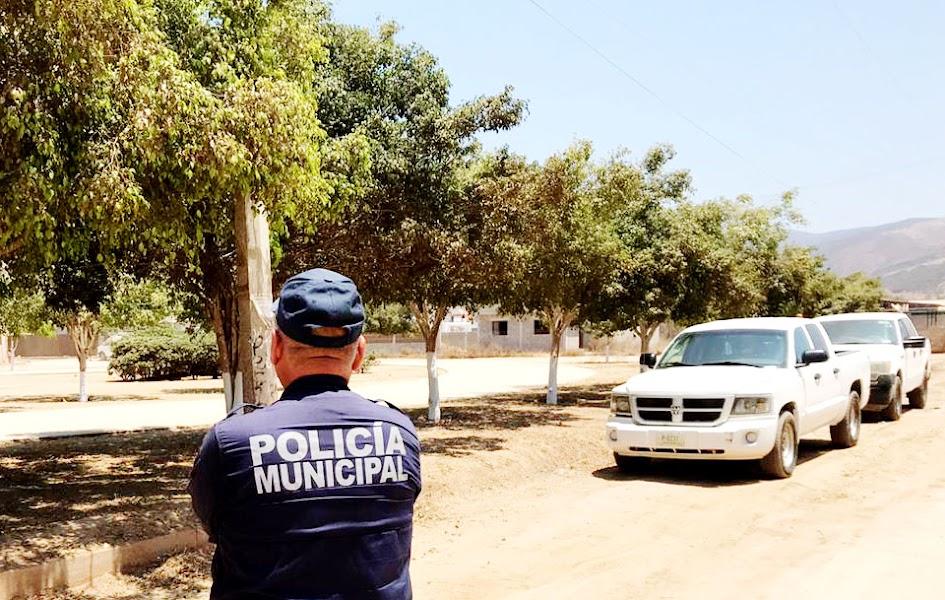 Policía municipal de Ensenada, vigila un lugar con árboles