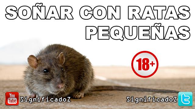 Soñar con Ratas Pequeñas ¿Que Significa?