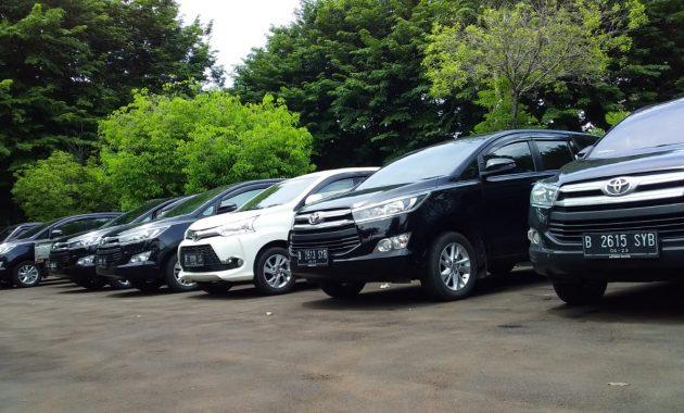 Ketahui Sewa Mobil Harian, Mingguan, Bulanan di Sofifi, Maluku Utara
