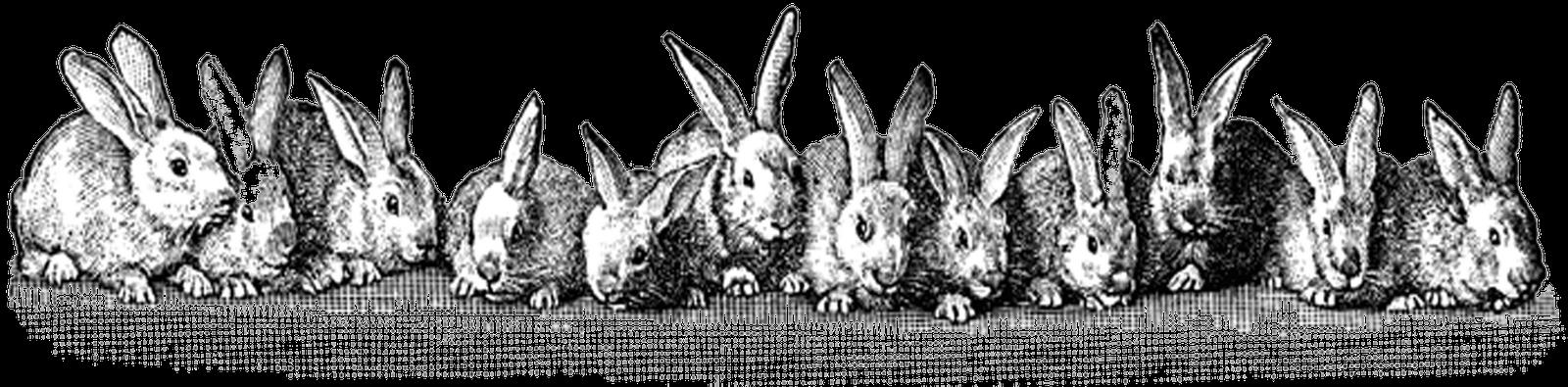 Free Easter Printable & Vintage Clip Art – Maggie Holmes ... Easter Clip Art Free Retro