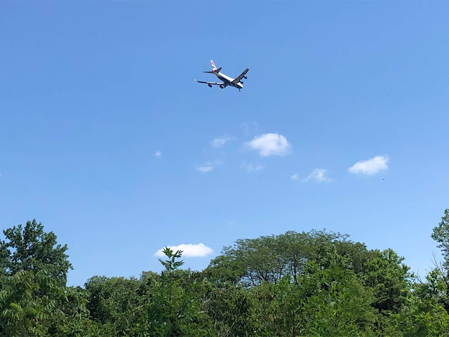 Airplane flying over Songbird Slough Forest Preserve.