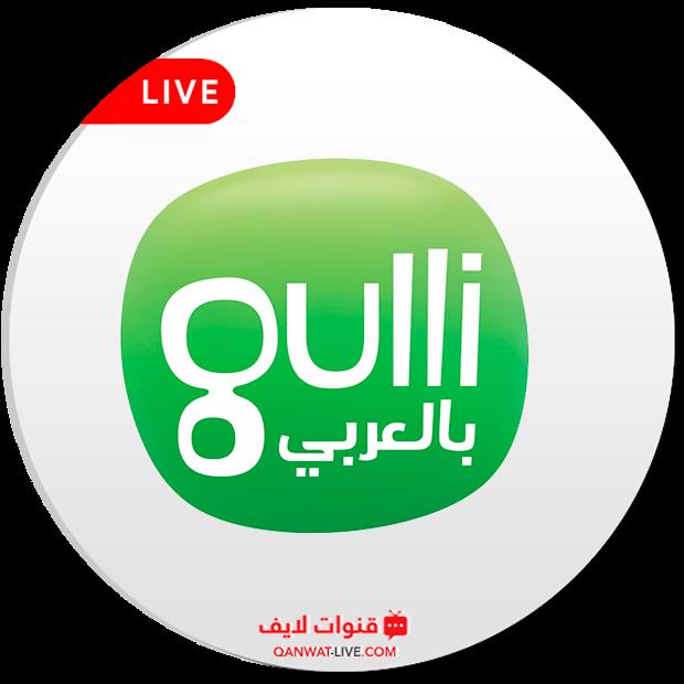 قناة جولي كيدز العربية Gulli Kids Arabic بث مباشر 24 ساعة