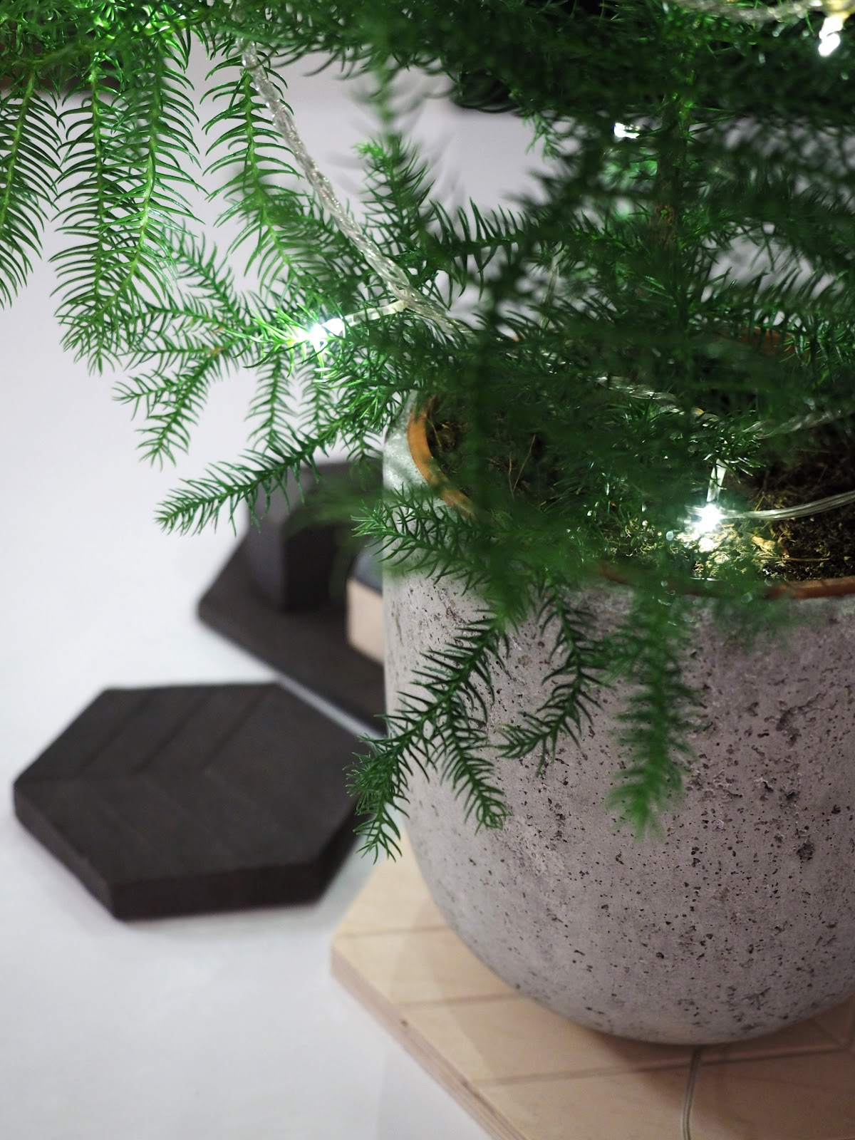 Huonekuusi, jouluvalot, joulu, tunnelma
