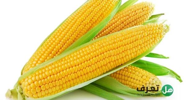 هل تعرف فوائد الذرة الصفراء ؟