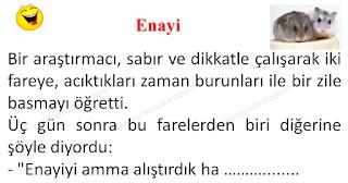 Enayi