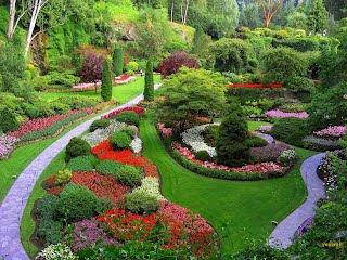 jardin wallpaper