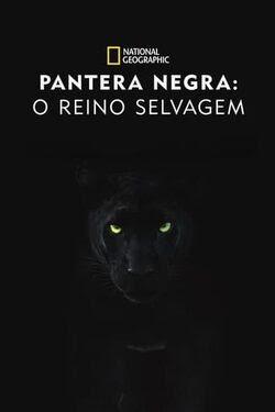 Pantera Negra: O Reino Selvagem Torrent Thumb