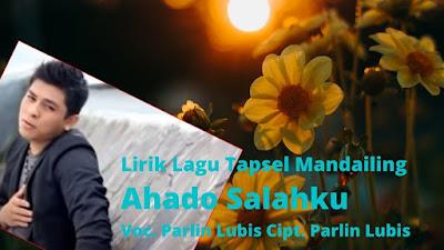 Parlin Lubis